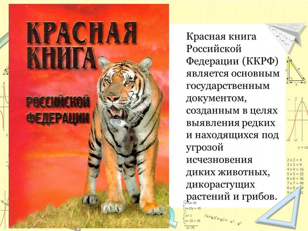 Животные Красной книги России: полный список животных , фото, название, описание